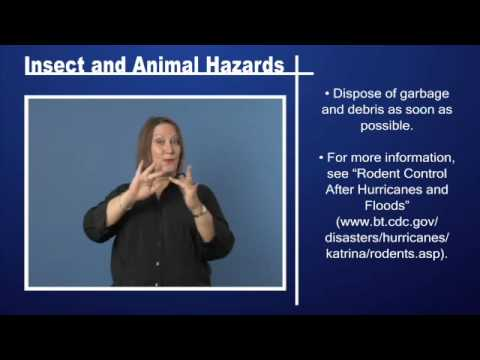 Insect and Animal Hazards Pt 2